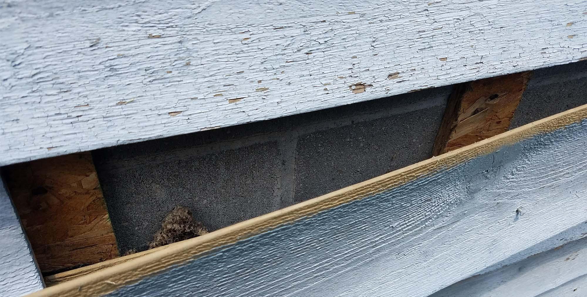cedar shingle siding installed over masonry wall