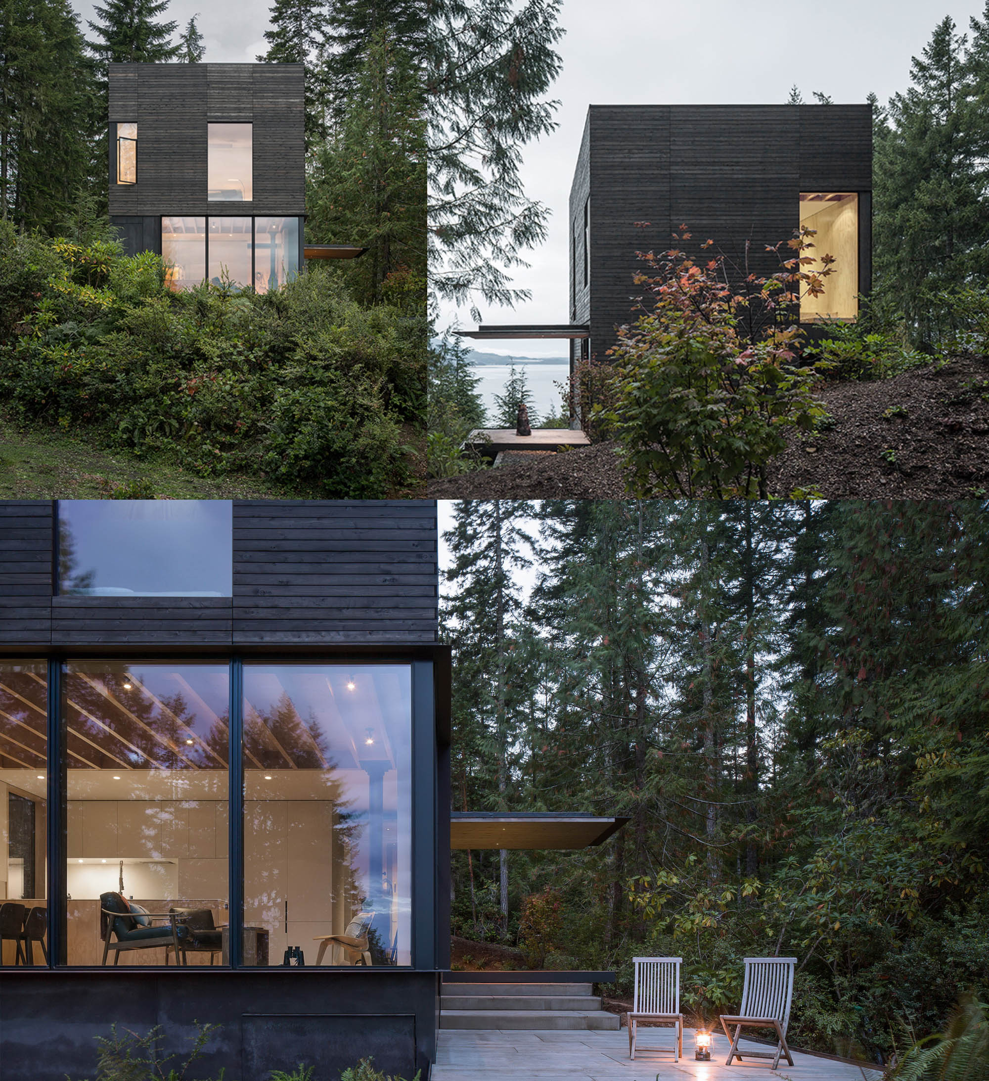 small house siding color ideas - black wood siding on a small forest house
