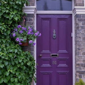 purple front door with red brick house lots of green plants glass transom