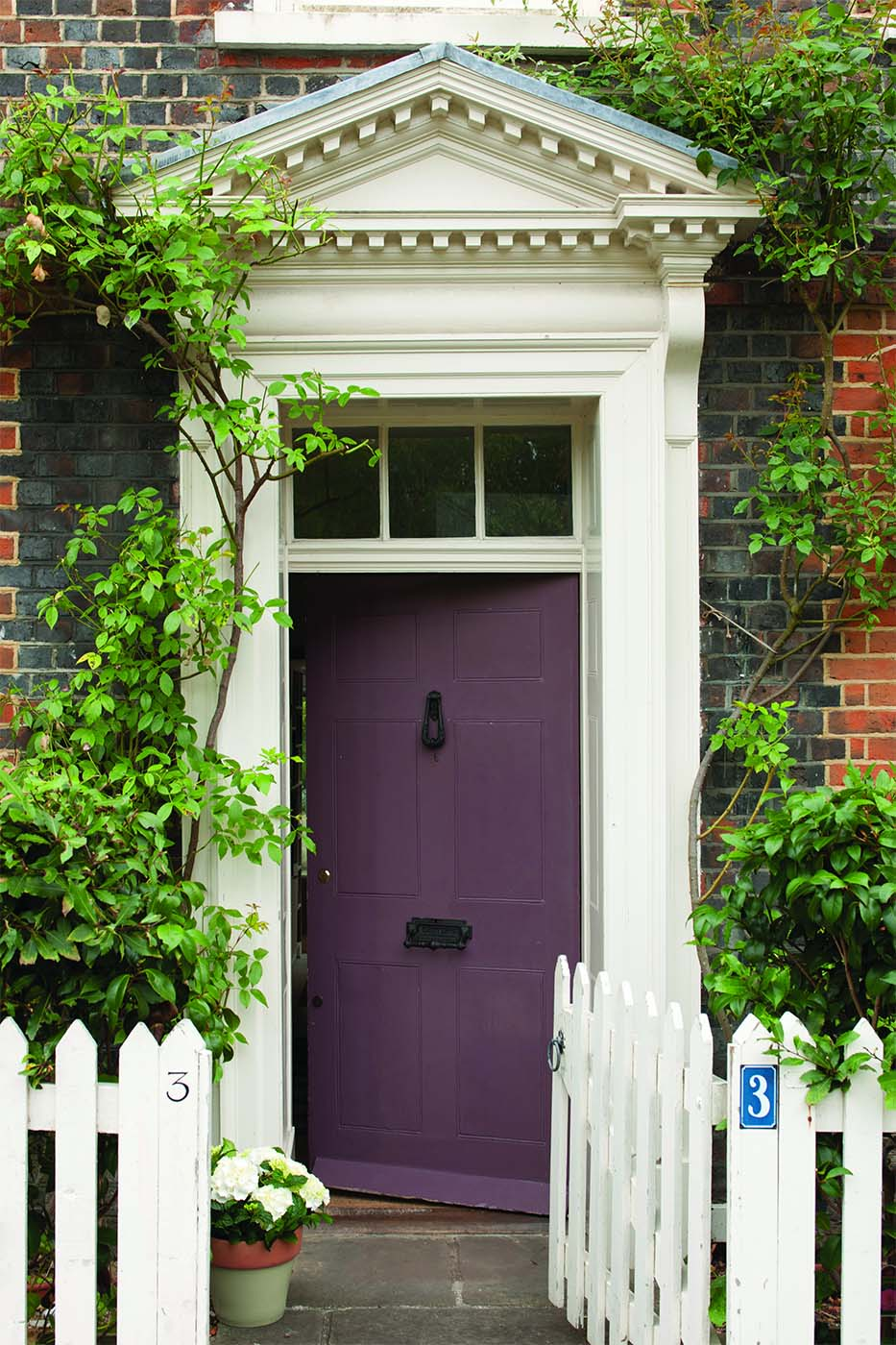 purple front door with glass transom and white trim red brick house lots of plants