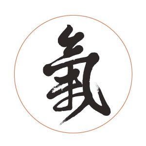 feng shui living room chi symbol written in chinese