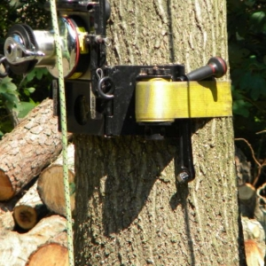 NJ tree service cable machine attached to tree trunk for extending ropes