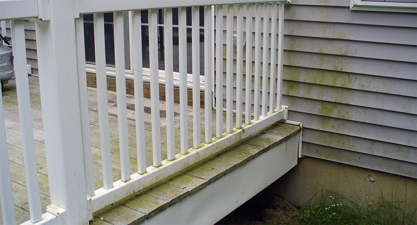 moldy trex deck common issues with trex decking | Gambrick