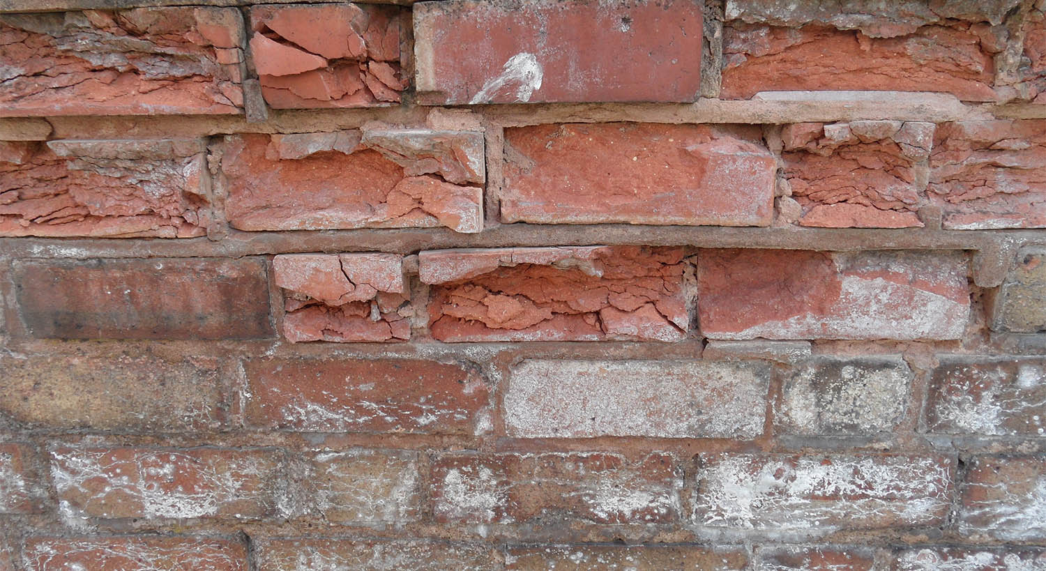 Brick veneer with both Spalling damage and Efflorescence.