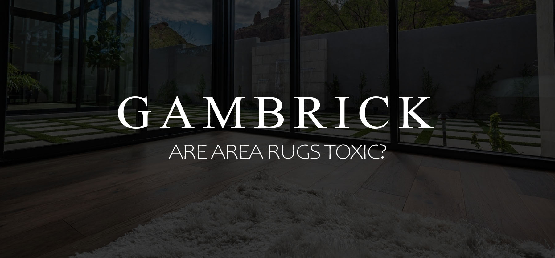 Are Area Rugs Toxic banner picture