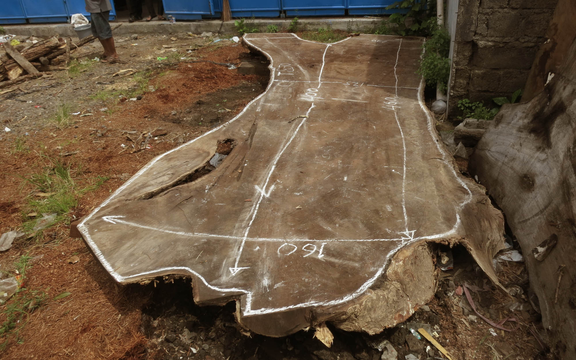Large wood acacia slab marked for a table cutout
