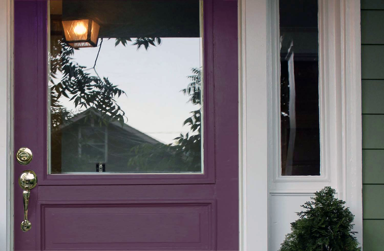 Plum purple front door with white trim, gold hardware and green lap siding.