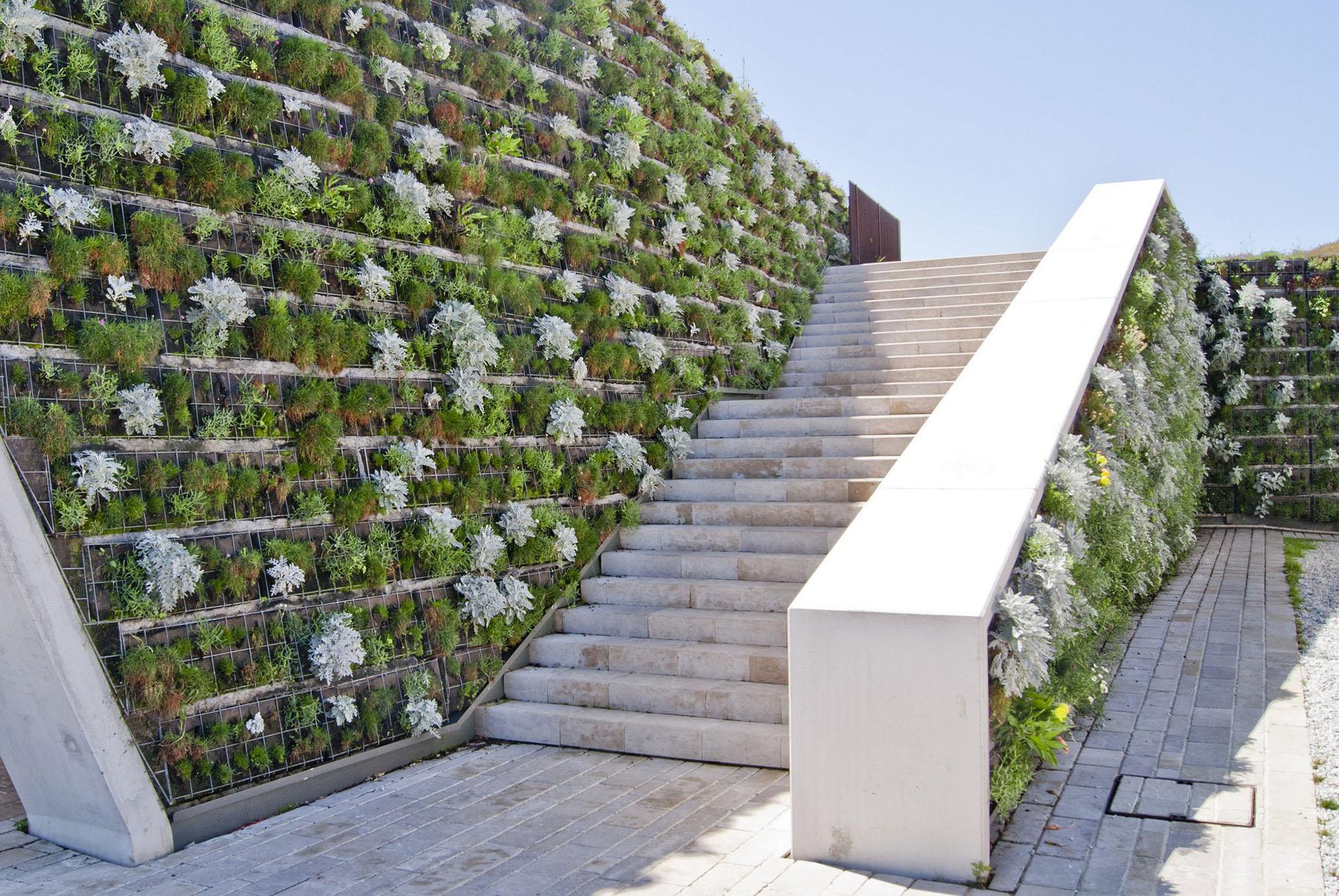 Living green walls surround concrete steps.