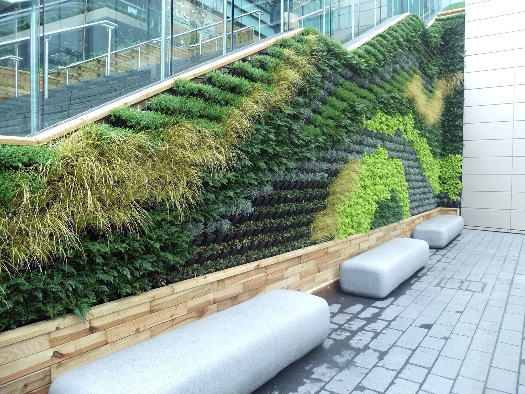 Eco wall on the side of a staircase with glass rails.