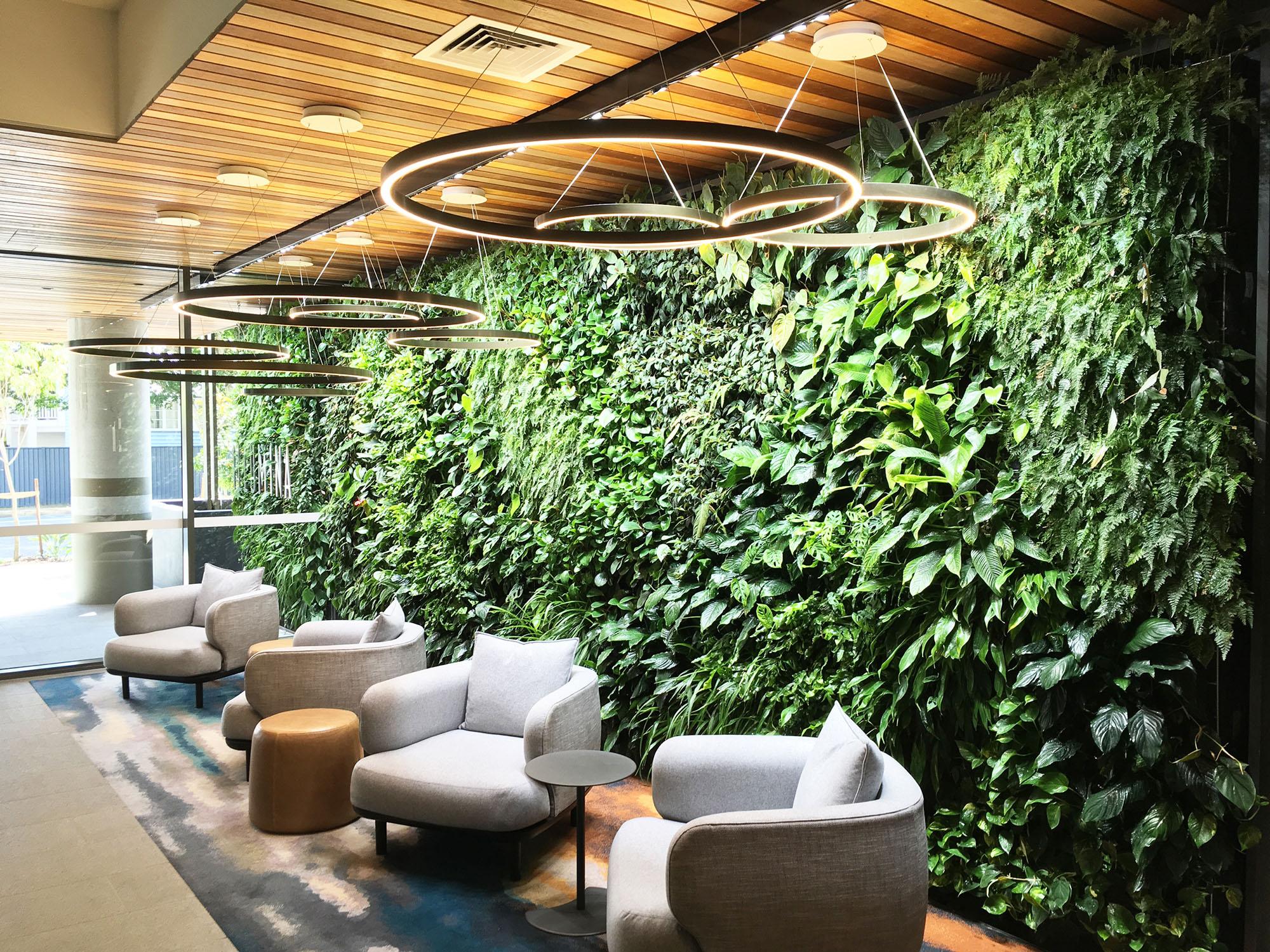 Plush living plant wall inside a lounge.