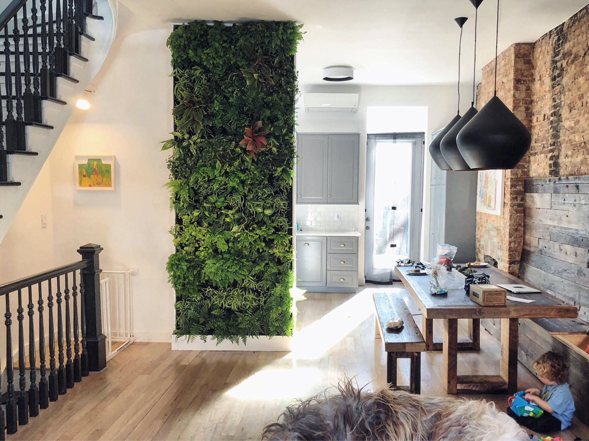 Living green wall display inside the home.