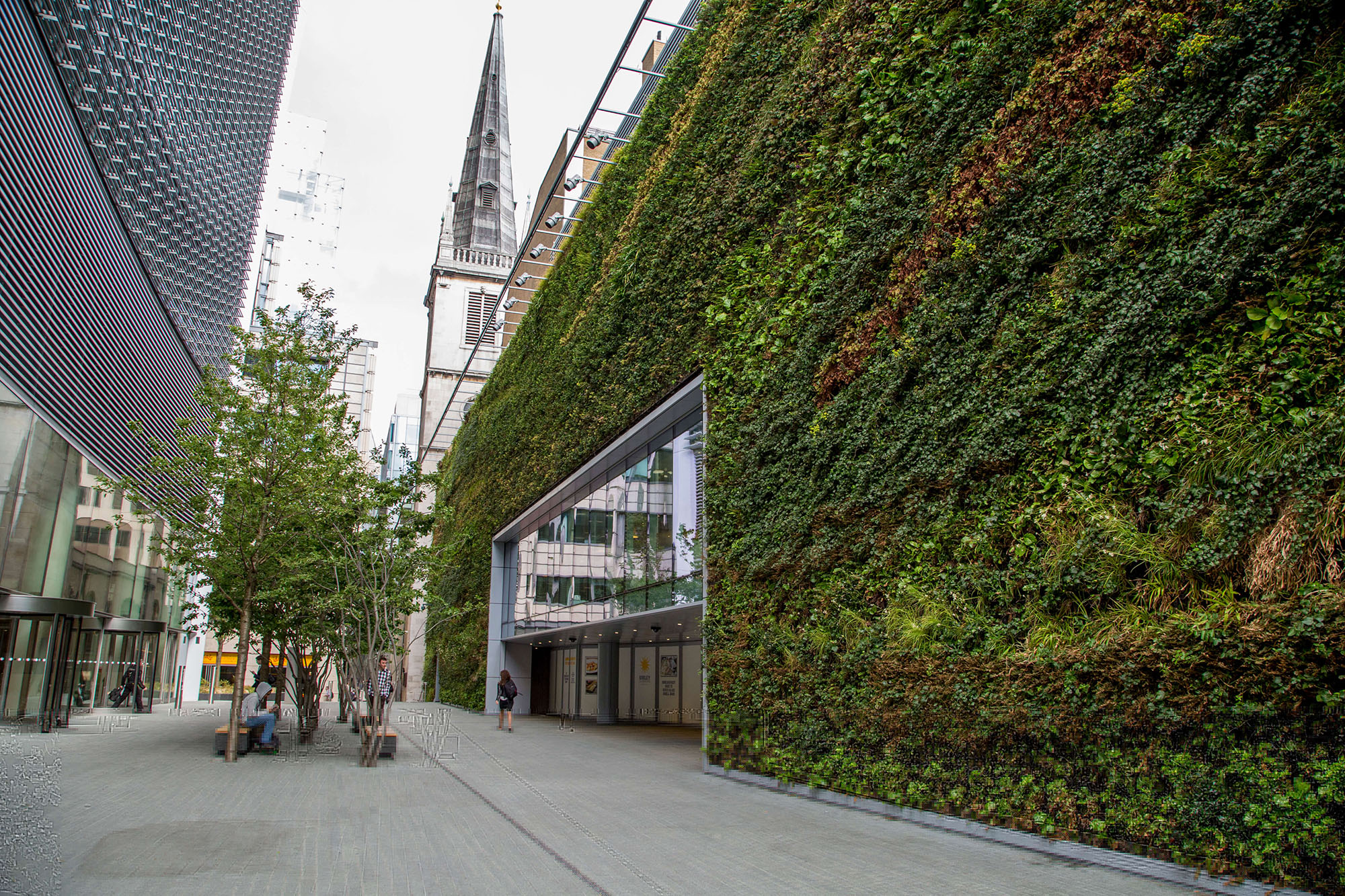 Living green wall on a department store entrance.
