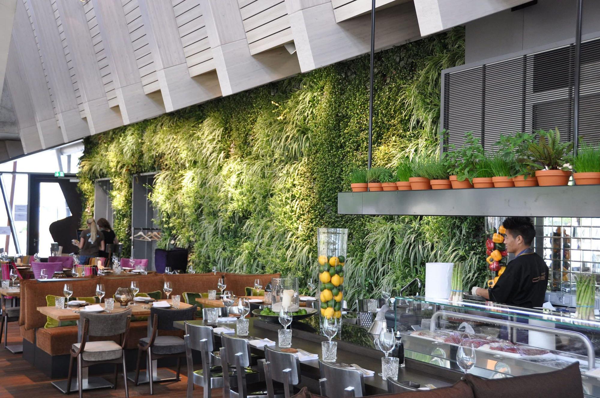 Plush living green Eco wall inside a restaurant.