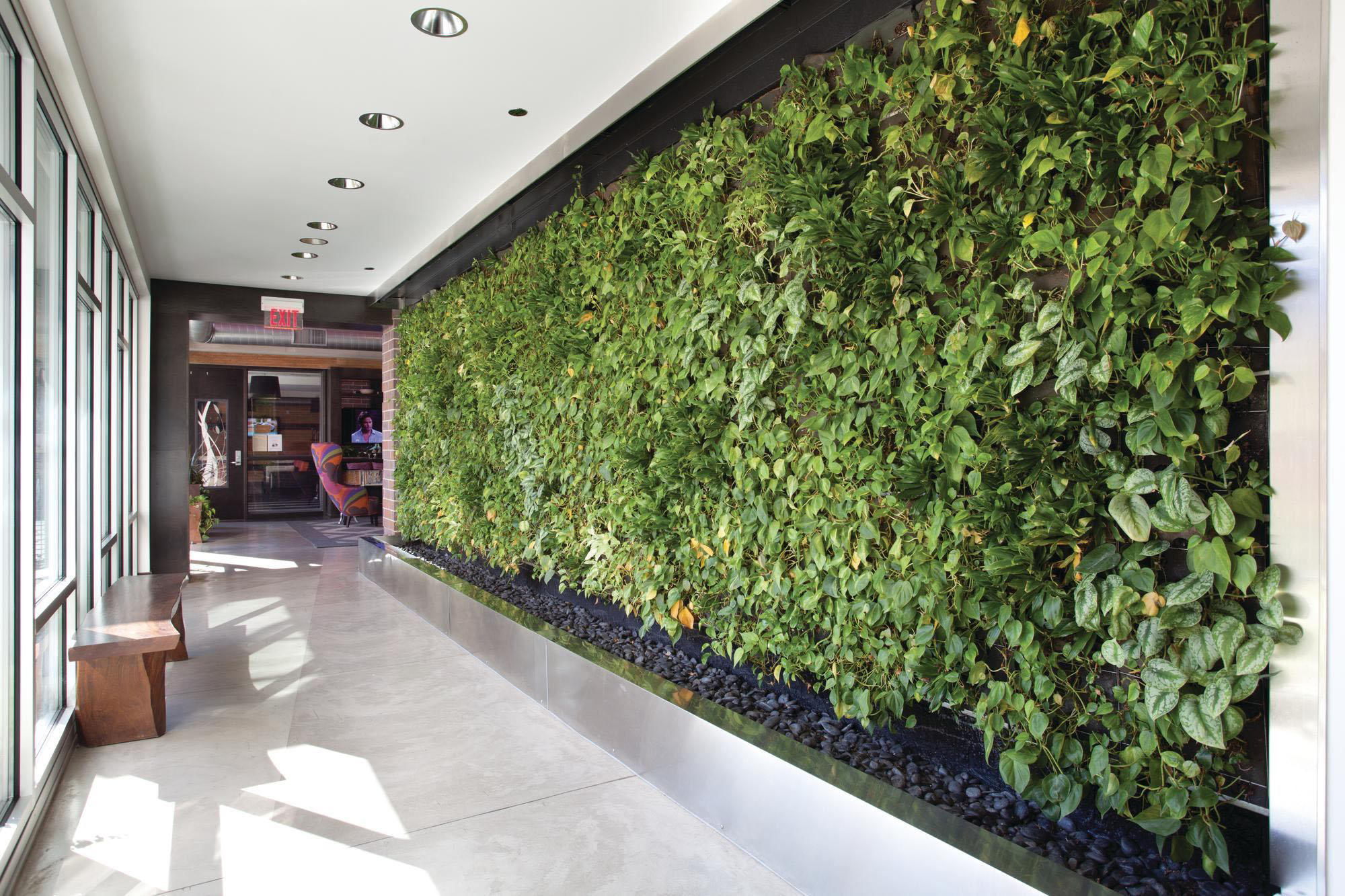 Green wall inside a building hallway in front of a wall of glass with drainage rock garden below.