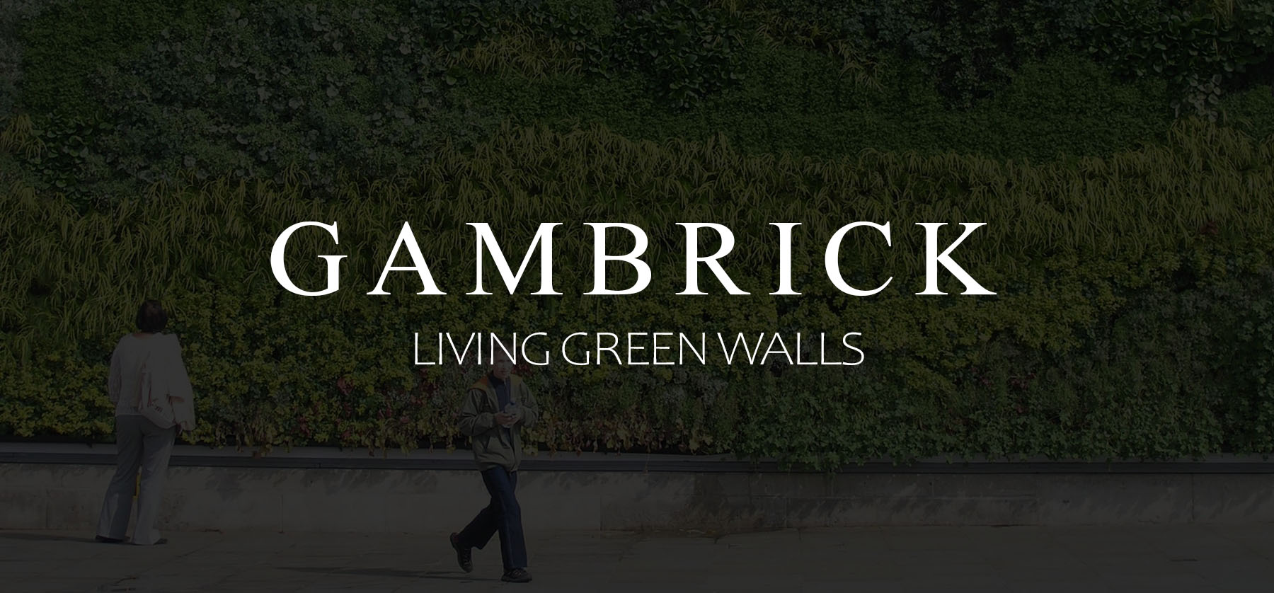 What Are Living Green Walls banner 1