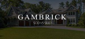 sod vs seed banner pic